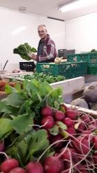 Récolte légumes bio