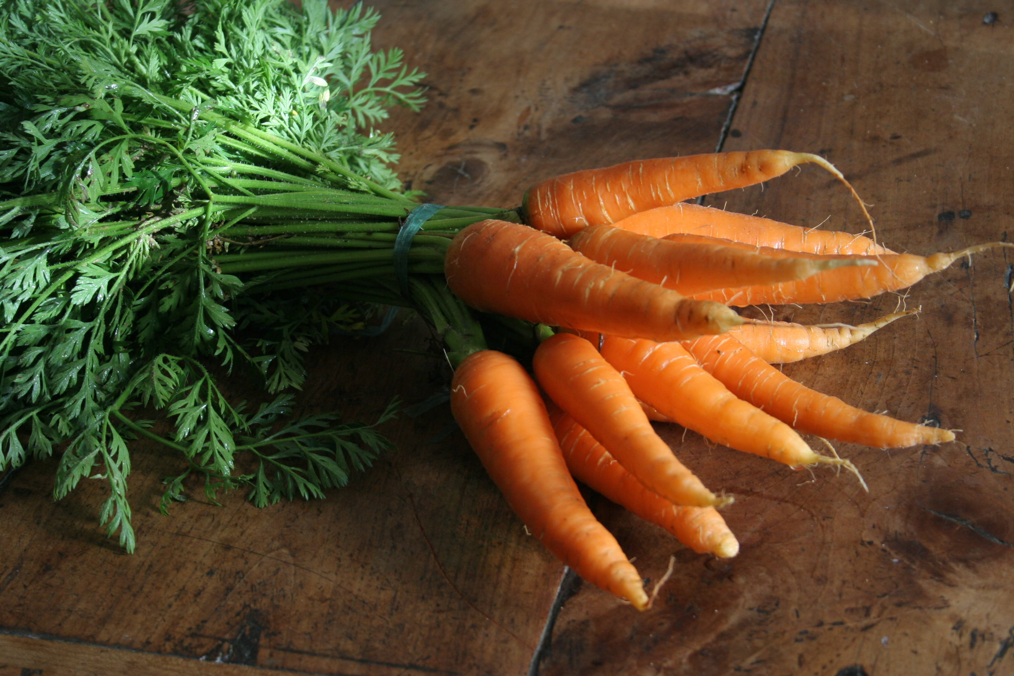 Deux bottes de carotte bio